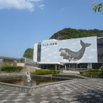 【関西・断食】ホテルがおすすめ!綺麗な海でファスティング!デトックス!