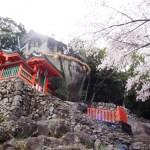 【3月4月春の熊野旅行】桜を楽しむ熊野古道と熊野三山オススメコースは?
