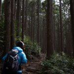 台風後の熊野古道はどうなってますか?熊野古道情報