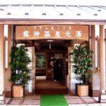 【龍神温泉アクセス】日帰り・1泊2日おすすめの温泉宿!「きらり」のランチが人気!