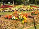 Toowoomba Flower Park Visit