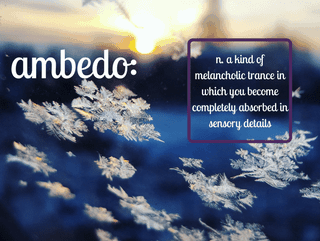 Self-Care Inspiration in the Dictionary of Obscure Sorrows: Ambedo