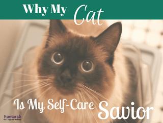 Why My Cat is My Self-Care Savior