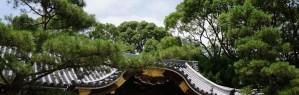 メインイメージ 杭全神社拝殿