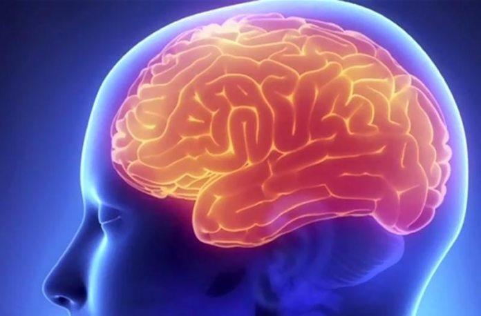 Мозг очищается от токсинов во время сна