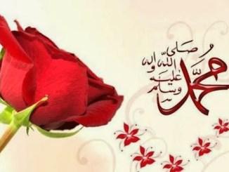 Istri-Istri Rosulullah shalallahu 'alaihi wasallam