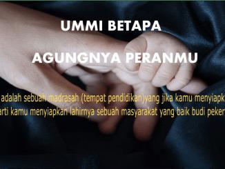 cover ummi