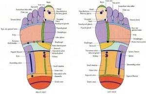 reflexology footchart
