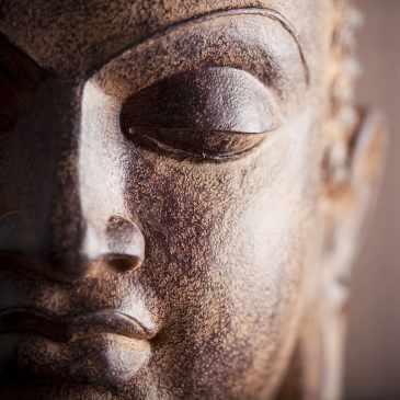 vue de la tête d'une statue de bouddha