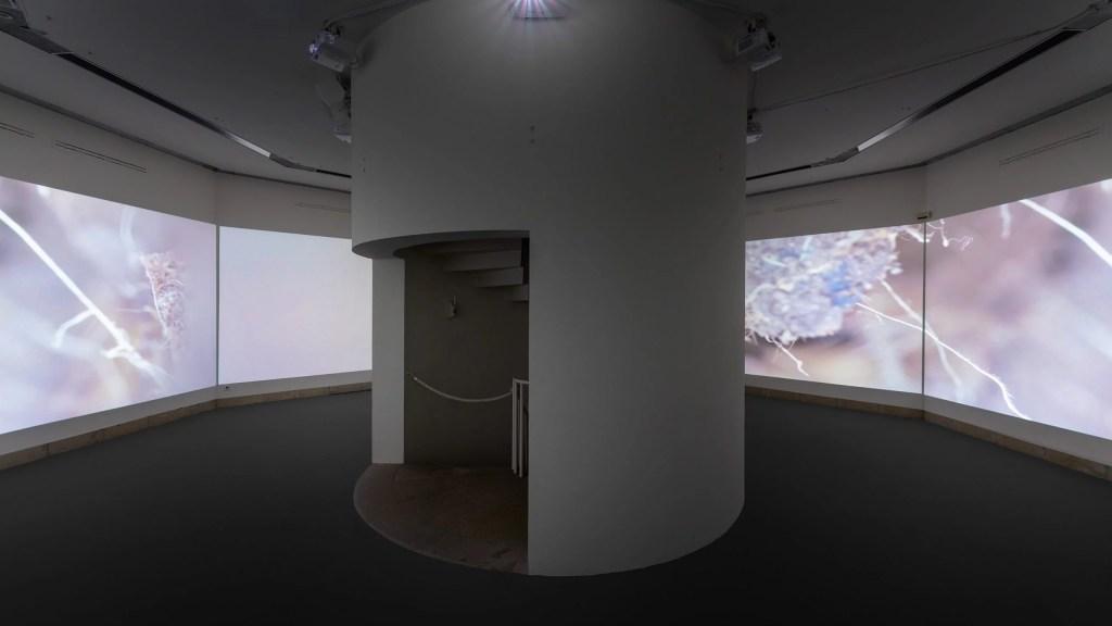 Maya Watanabe, Liminal, 2019, Ausstellungsansicht Beyond the Pain in der Galerie Stadt Sindelfingen, Foto: Henning Krause