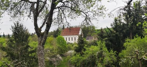 Durch Bäume hindurch sieht man von Weitem die barocke Weggentalkirche.