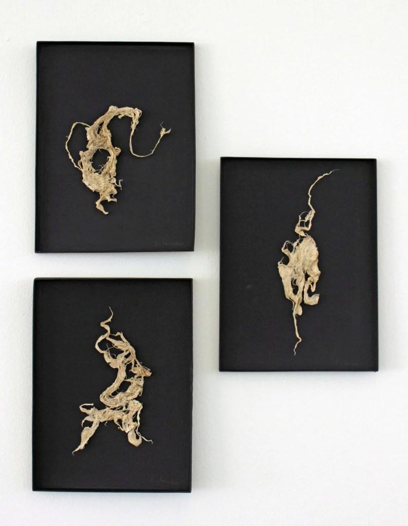 Ingrid von Normann. Kartonbilder I, II, III, 2021, Kozoskulpturen auf Karton. Foto: Julia Berghoff.