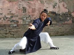Estilos Sueves de Kung Fu