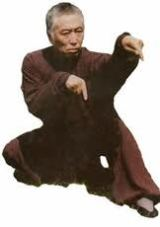 Maestro Sun De Yao de kung Fu