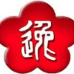 VING TSUN KUNG FU EN GIRONA