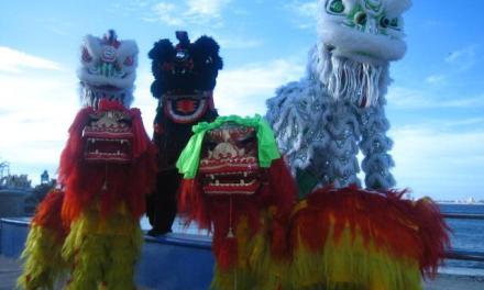 Los estilos en la Danza del León