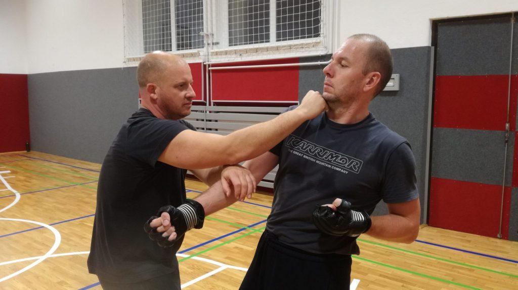 Wing Chun 0wks
