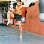 Shifu Yan Lei kickboxing training 1