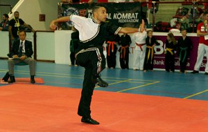 Nemea Wushu Group from Itlay