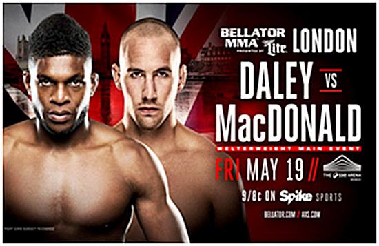 Bellator MMA 179 - Poster 1