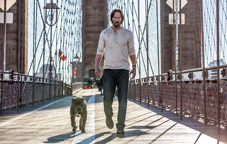Keanu Reeves is back as the dog loving assassin John Wick