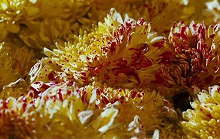 Blood spills, golden flowers cursed