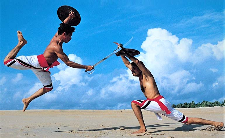 Martial Art of the Month: Kalaripayattu