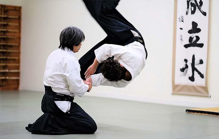 Master Haruo Matsuoka in Action