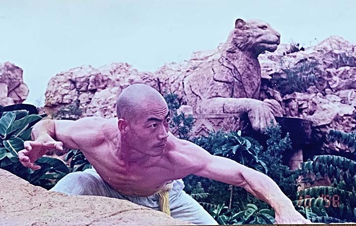 Shifu Yan Ming strikes with the Eye of the Tiger!