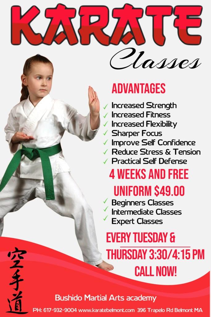 martial arts Waltham MA