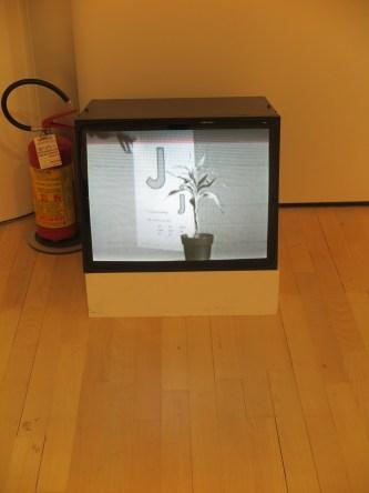 John Baldessari - Teaching a plant the alphabet, 1972