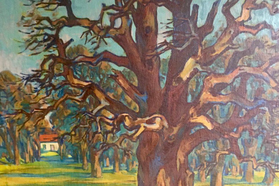 Erich Fraaß, Eiche ( im großen Garten Dresden) um 1960, Öl/Lw., 100x 85, WVZ 780