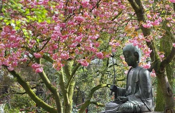 Boeddha - Ronald van Weeren