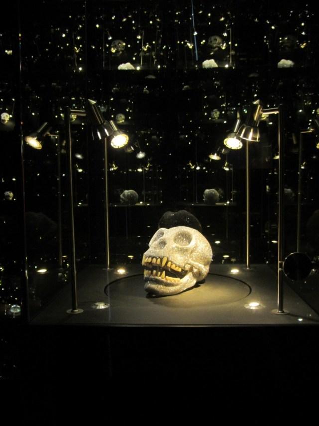gorilla schedel diamantmuseum