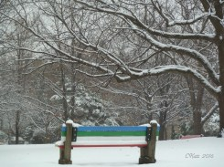 park-benches-2