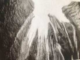 Cathelijn van Goor uit serie Rare Digital Phenomena (foto uit haar boek)