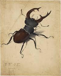Vliegend Hert, Albrecht Dürer 1505