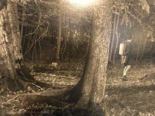 """Erwin Olaf, detail In der Abenddämmerung. """"..De jongeman met blote benen en genegen hoofd loopt alleen het bos in. Rugzak op."""""""