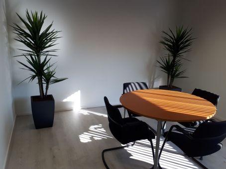 Kunstplanten voor kantoor - Projectbeplanting - Kunstplantshop.nl