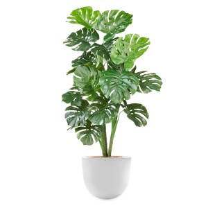 HTT - Kunstplant Monstera in Eggy wit H130 cm - kunstplantshop.nl