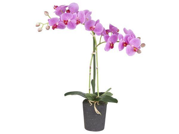 HTT Decorations - Kunstplant Orchidee / Phalaenopsis 2-tak roze H53cm - kunstplantshop.nl