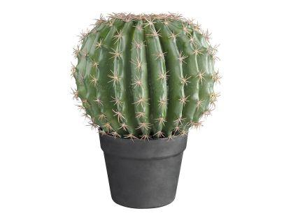 Kunstplant Cactus bol met sierpot (33x25 cm) - Kunstplantshop.nl