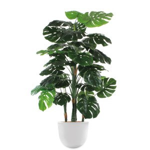 HTT - Kunstplant Monstera in Eggy wit H155 cm - kunstplantshop.nl