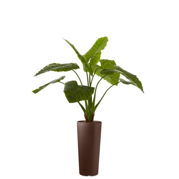 HTT - Kunstplant Philodendron in Clou rond bruin H165 cm - kunstplantshop