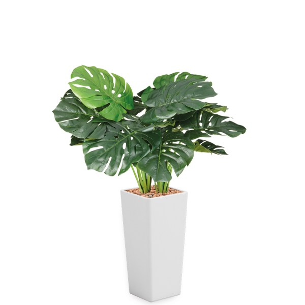 HTT - Kunstplant Monstera in Clou vierkant wit H105 cm - kunstplantshop.nl