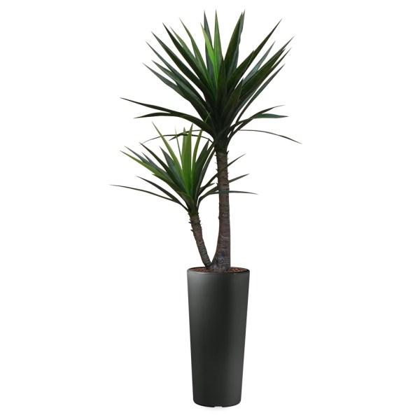 HTT - Kunstplant Yucca in Clou rond antraciet H185 cm - kunstplantshop.nl