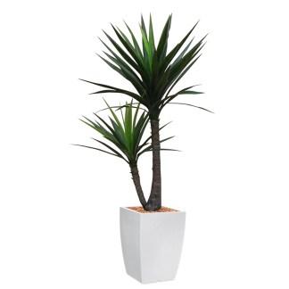 HTT - Kunstplant Yucca in Genesis vierkant wit H150 cm - kunstplantshop.nl