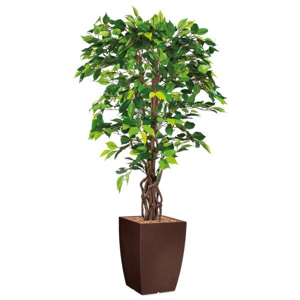 HTT - Kunstplant Ficus in Genesis vierkant bruin H165 cm - kunstplantshop.nl