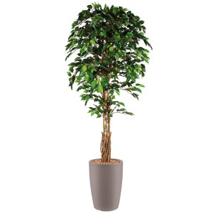 HTT - Kunstplant Ficus in Genesis rond taupe H210 cm - kunstplantshop.nl