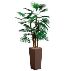 HTT - Kunstplant Rhapis palm in Clou vierkant bruin H185 cm - kunstplantshop.nl